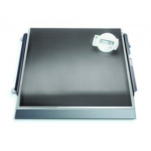 SECA 675* plateforme de pesée électronique (III)